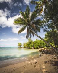 Traumhafter Strand auf Oahu, Hawaii