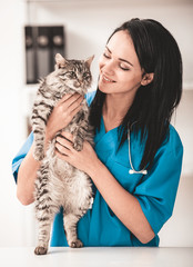 Young veterinarian woman in vet clinic