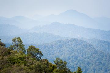 Cameron Highlands Gunung Jasar trekking