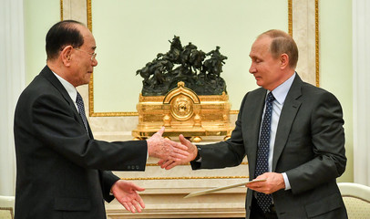 Russian President Vladimir Putin shakes hands with North Korea's President of the Supreme People's Assembly Kim Yong Nam during their meeting in Moscow