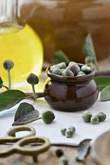 freshly picked capers,an  arrangement of freshly picked capers with olive oil in a vertical format , selective focus, with copy space in the background