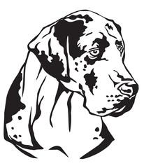 Decorative portrait of Great Dane vector illustration