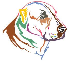 Colorful decorative portrait of Central Asian Shepherd Dog vector illustration