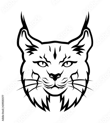 Bobcat Outline Silhouette Stock Image And Royalty Free Vector Files