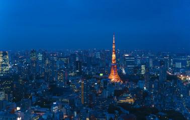 東京風景・大都会の夜景