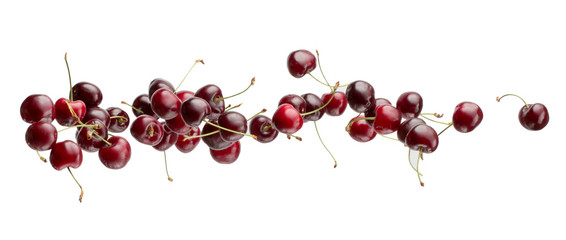 sweet cherries isolated on a white background Wall mural