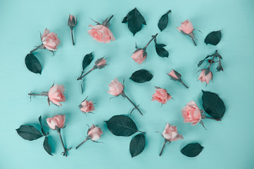 scattered pink roses on a mint background