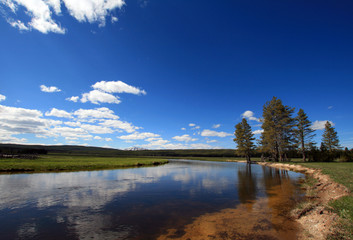 Gibbon River peacefully flowing through Gibbon Meadows in Yellowstone National Park in Wyoming United States