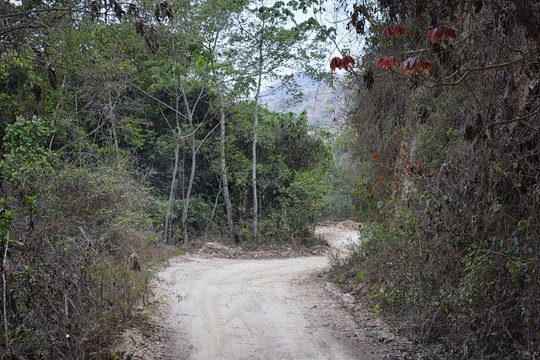 Jungle Landscape views from the rural small village road to El Eden by Puerto Vallarta Mexico where Predator the movie with Arnold Schwarzenegger was mostly filmed