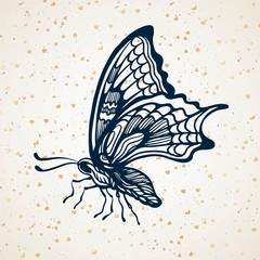 Hand-draw of monarch butterfly on a paper backround. Vector illustration. Place for your text