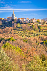 Foto op Aluminium Idyllic hill village of Groznjan panoramic view