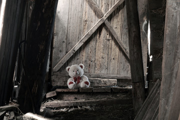 The lonely teddy bear sits in the old shed.