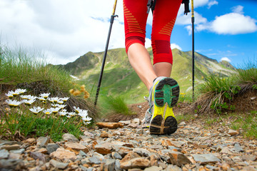 Detail of legs near the flowers of a girl who practices Nordic walking in the mountains Wall mural