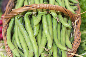 Broad beans in box.