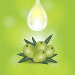 Geen olives branch and oil drop isolated on green background. Design for olive oil, cosmetics, health care products.