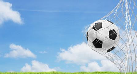soccer ball blue sky green lawn 3d rendering soccer goal