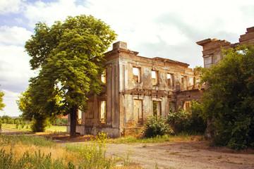 estate in the village of Vasilyevka, Odessa region, Ukraine