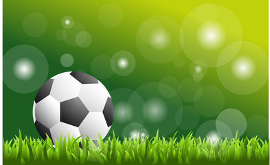 Soccer ball on green grass - vector soccer background