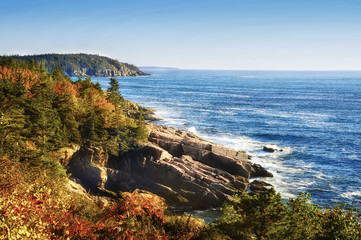 Poster Cote The coast of the Atlantic Ocean. rocky wooded coast. National park of Acadia. USA. Maine