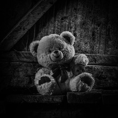 Teddy bear sitting in thrown shed.