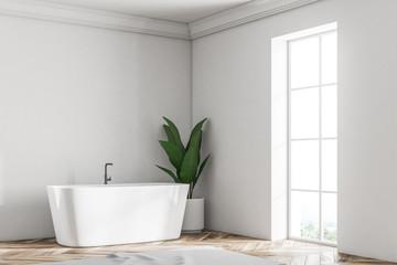 White loft bathroom corner, tub and plant