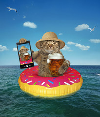 The cat in a straw hat with a mug of beer makes selfie on the inflatable circle in the sea.