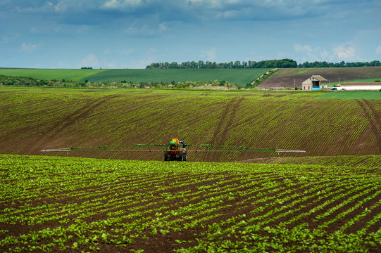 tractor, sugar beet, spraying