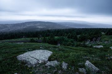 Große Steine liegen auf der Wiese, Berglandschaft Brocken im Harz