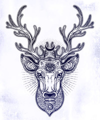 Ornate Deer head with beautiful crescent moon in his antlers, hand drawn magic vintage illustration