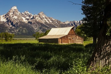 Historic Barn and the Teton Range: View of the historic Moulton barn just clearing the early morning shadows at the base of the Teton Range.