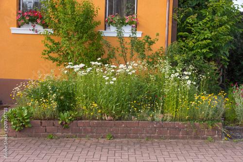 Landlicher Vorgarten Mit Einheimischen Pflanzen Und Blumen Stock