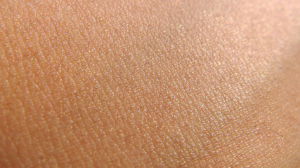 Obraz human skin texture - fototapety do salonu