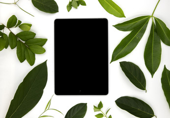 Black screen pad and green summer leaves on white background. User interface of ipad app mockup with green foliage