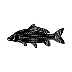 Vector image of fish carp silhouette