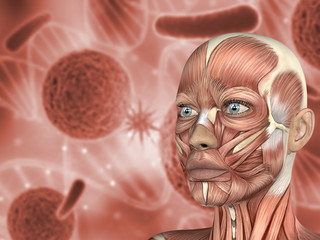 3D medical background female face with muscle map on virus cells
