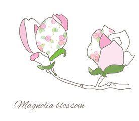 Magnolia stylized drawing.