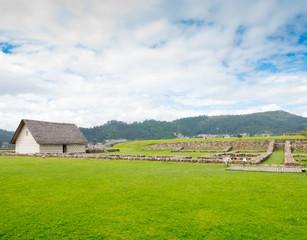 Inca ruins in the Pumapungo archaeological park Cuenca Ecuador