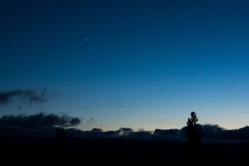 薄暮の金星と木星