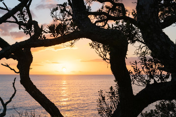Pacific sunrise from Mount Maunganui.
