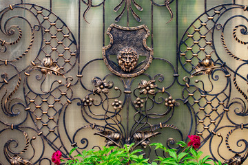 Details, structure and ornaments of forged iron gate. Decorative ornamen with lions , made from metal