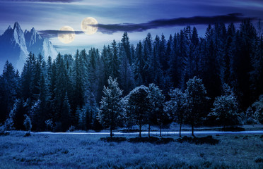 double moon over the forested landscape at night in full moon light. composite image with mountain ridge in the distance. astronomy phenomenon and fake news concept