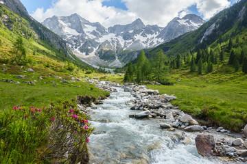 Fototapeta Wildbach vom Gletscher in den österreichischen Bergen obraz