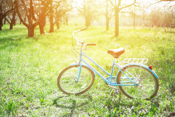 Printed kitchen splashbacks Bicycle Transport for summer. Rent a bicycle. Blue vintage bicycle stands in the park among the trees in the sun