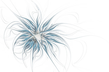 Blue flower on a white background. Abstract fractal