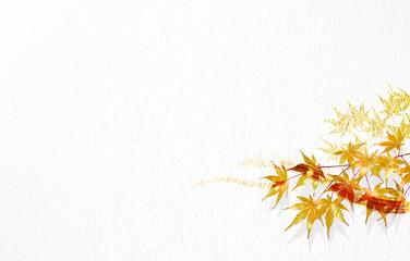 紅葉のイラスト(背景は白い和紙)