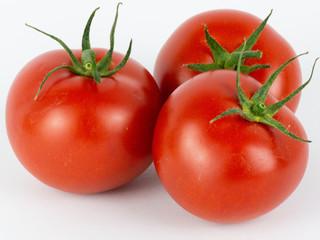 tomato in white background