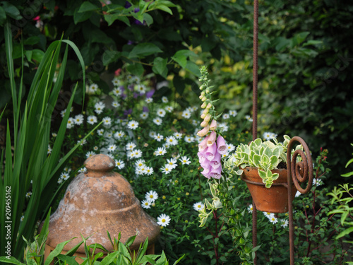 Sommer Im Garten Stock Photo And Royalty Free Images On Fotoliacom