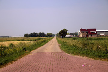 country road in the middle of the Zuidplaspolder, the lowest land reclaim of the Netherlands with altitude of -21 feet.