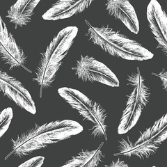 Feather natural bird seamless pattern. Hand drawn vector illustration.
