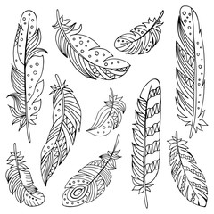 Decorative set of feathers in ethnic style. Hand drawn vector illustration.
